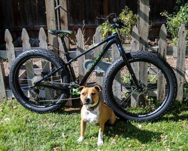 2014 Trek Farley (and a cool dog named Henry)