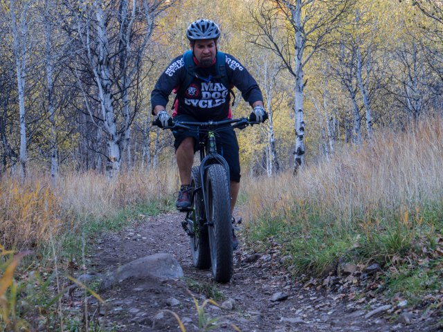 The Surly Knards are a great all around tire.