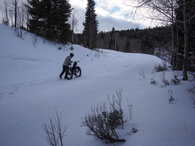 Near Elk Camp, Cascade Springs Rd. Soft snow, big, cold wind and trudging.
