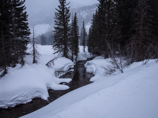 The creek coming out of Mineral Basin.