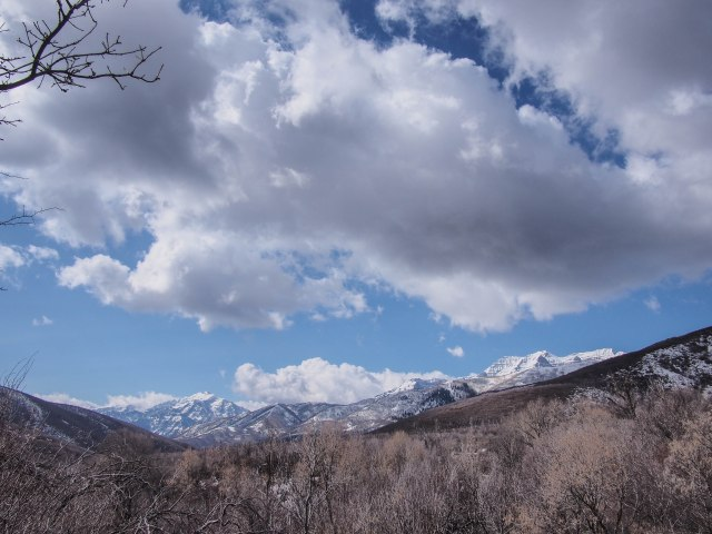 The view above the springs.