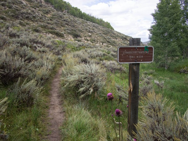 Beginning of the east end of the trail.