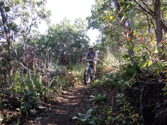 Onto the backside with lots of shady forest riding.
