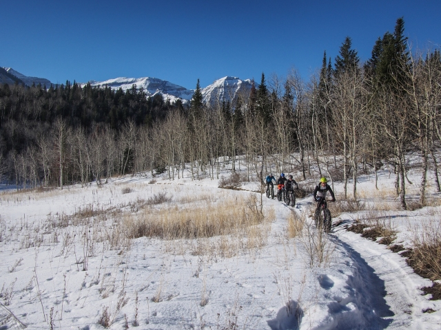 Skirting a high mountain meadow