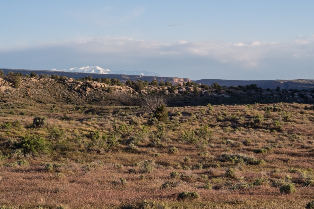 The snow-capped La Sals in the distance