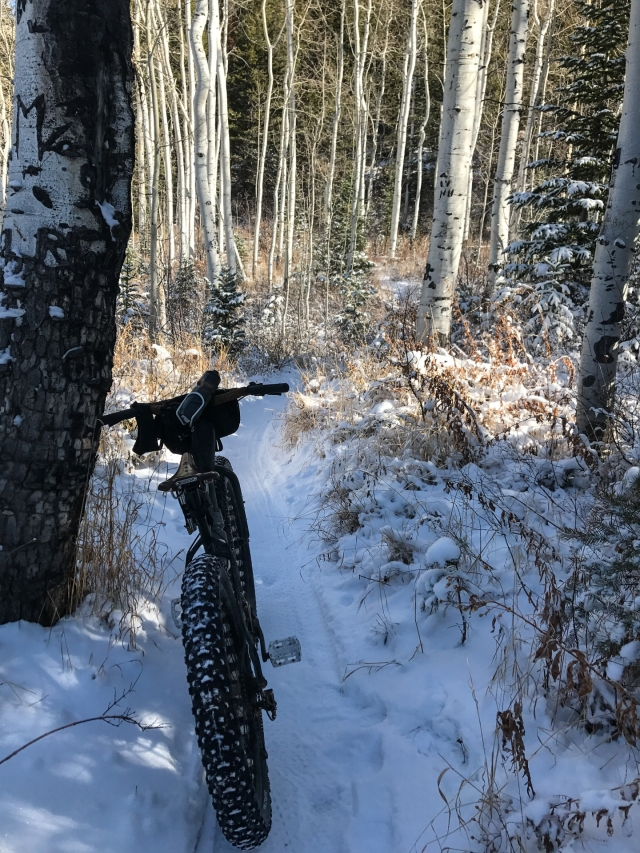 Decent trail conditions considering only one storm.